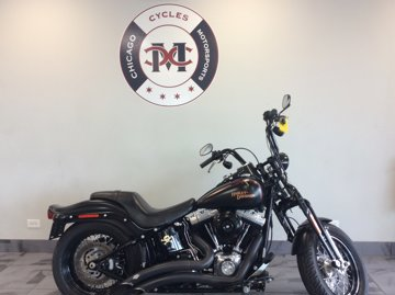 2010 Harley Davidson FLSTSB CROSSBONES