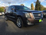 Used-2016-Cadillac-Escalade-ESV-4WD-4dr-Premium-Collection