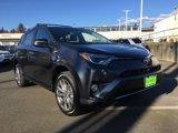 2017-Toyota-RAV4-Platinum-AWD