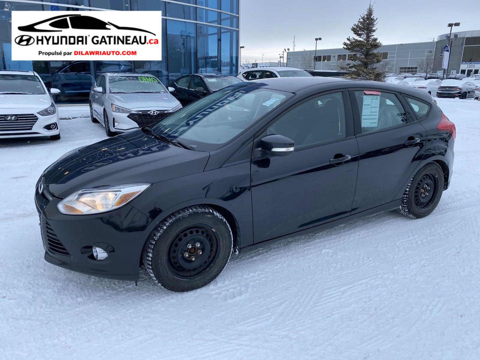 Ford Focus Hatchback - 2013