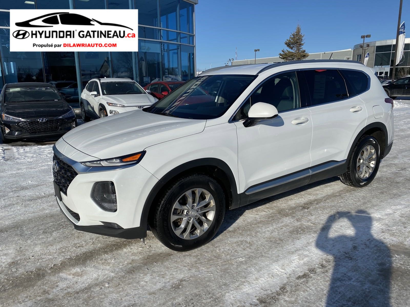 Hyundai Santa Fe Sport Utility - 2019