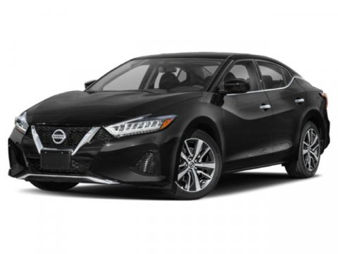 2019 Nissan Maxima SL photo