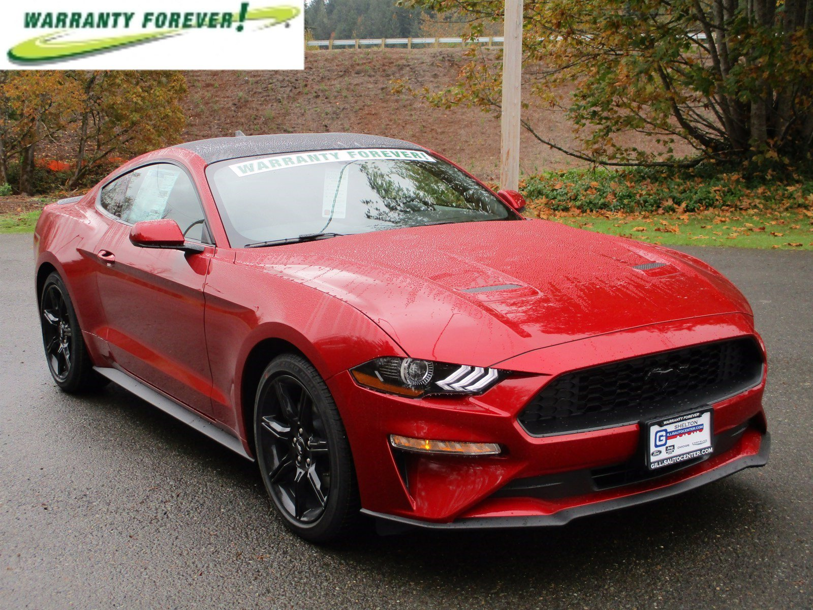 New 2020 Ford Mustang EcoBoost Fastback