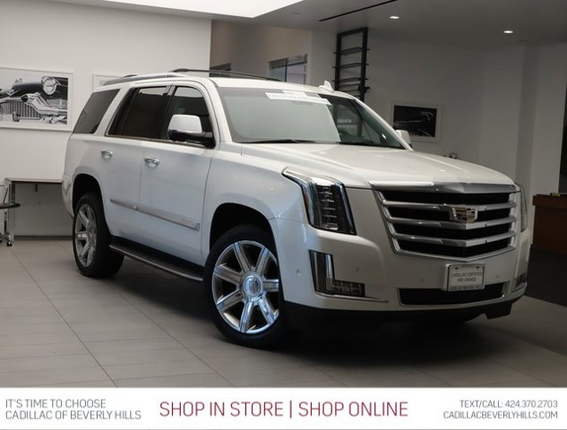 2017 Cadillac Escalade Luxury 2WD 4dr Luxury Gas V8 6.2L/376 [0]