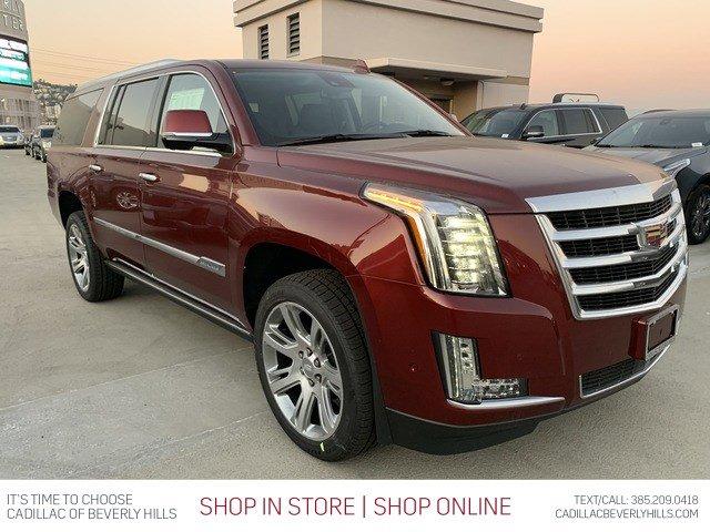 2020 Cadillac Escalade ESV Premium Luxury 2WD 4dr Premium Luxury Gas V8 6.2L/376 [19]