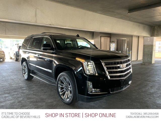 2018 Cadillac Escalade Premium Luxury 2WD 4dr Premium Luxury Gas V8 6.2L/376 [1]