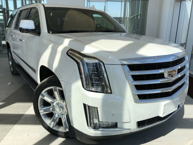 2019 Cadillac Escalade ESV Luxury 4WD 4dr Luxury 6.2L V8 [1]