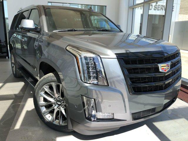 2020 Cadillac Escalade Premium Luxury 4WD 4dr Premium Luxury 6.2L V8 [4]