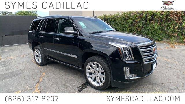 2019 Cadillac Escalade Platinum 4WD 4dr Platinum Gas V8 6.2L/376 [10]