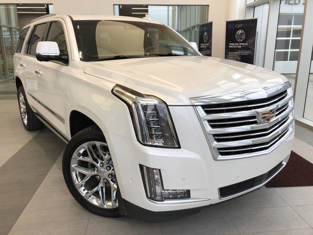 2017 Cadillac Escalade Platinum 4WD 4dr Platinum 6.2L V8 [0]