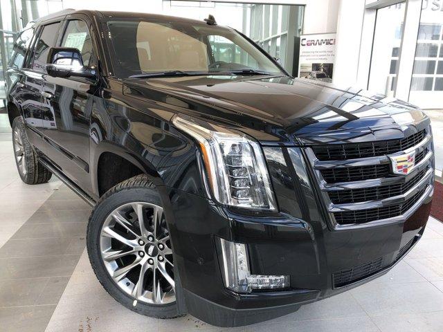 2020 Cadillac Escalade Premium Luxury 4WD 4dr Premium Luxury 6.2L V8 [6]