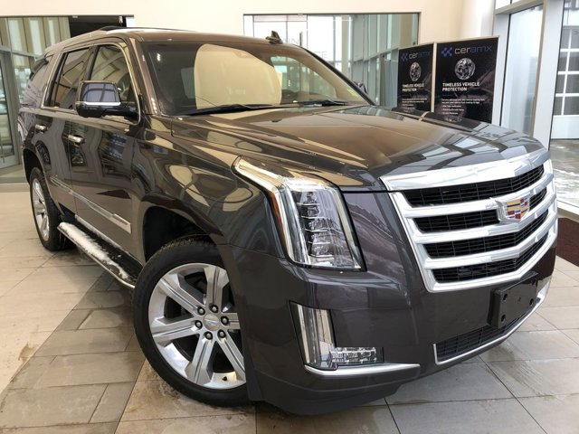2016 Cadillac Escalade Luxury Collection 4WD 4dr Luxury Collection 6.2L V8 [8]