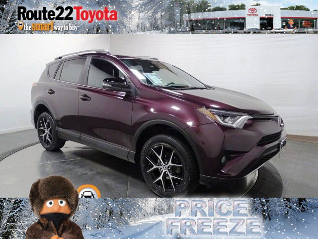 2018 Toyota RAV4 SE SE AWD Regular Unleaded I-4 2.5 L/152 [9]