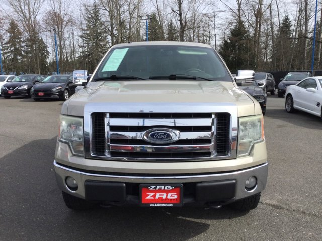 Used 2009 Ford F-150 4WD SuperCrew 145 XLT
