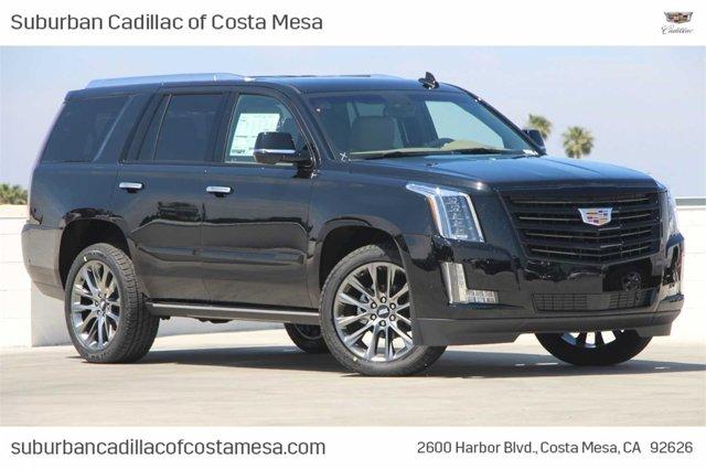2019 Cadillac Escalade Platinum 2WD 4dr Platinum Gas V8 6.2L/376 [8]