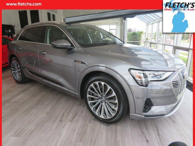 New 2019 Audi e-tron in Petoskey, MI
