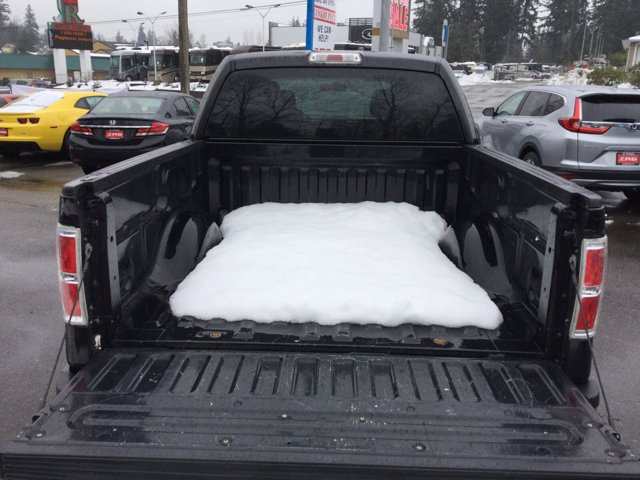 Used 2010 Ford F-150 2WD SuperCrew 145 XL