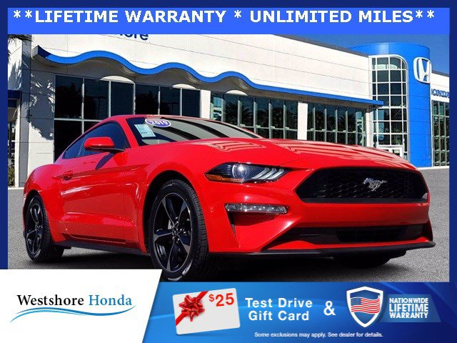 Used 2019 Ford Mustang in Tampa, FL