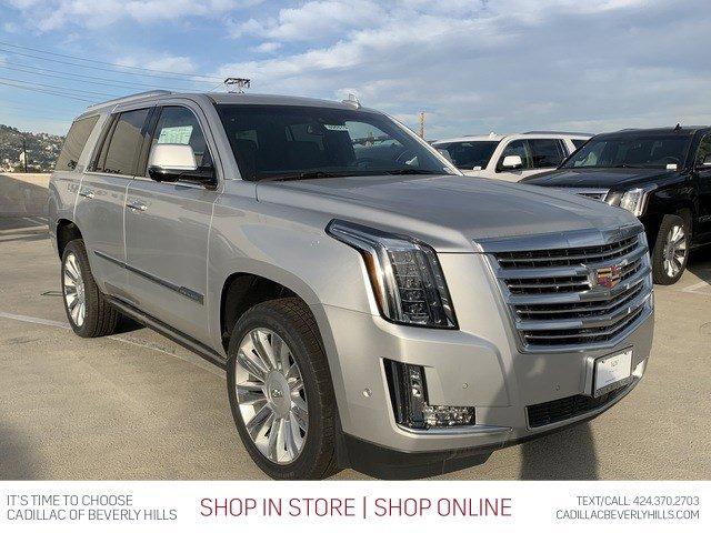 2019 Cadillac Escalade Platinum 4WD 4dr Platinum Gas V8 6.2L/376 [1]