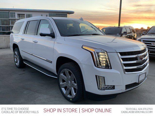 2020 Cadillac Escalade ESV Luxury 2WD 4dr Luxury Gas V8 6.2L/376 [16]