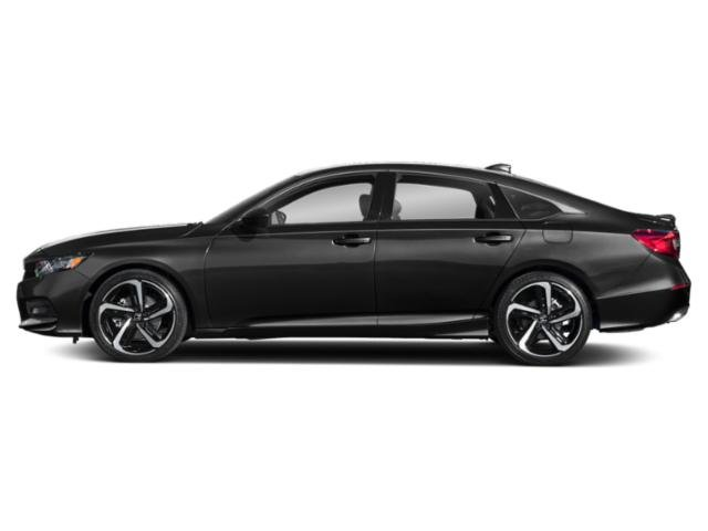 New 2019 Honda Accord Sedan in Orland Park, IL