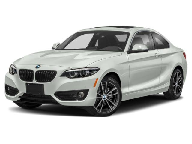 2020 BMW 2 Series 230i xDrive 230i xDrive Coupe Intercooled Turbo Premium Unleaded I-4 2.0 L/122 [2]