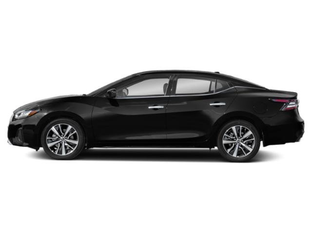New 2019 Nissan Maxima in Bessemer, AL