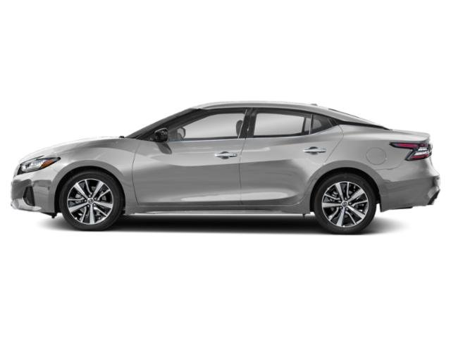 Used 2019 Nissan Maxima in Gallup, NM