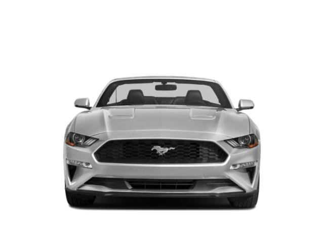 Used 2019 Ford Mustang in Orlando, FL